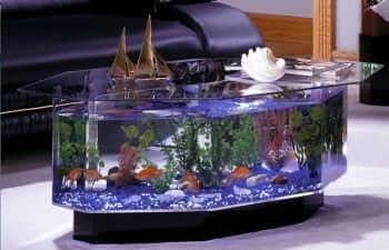 680 Stretched Octagon Aquarium Coffee Table2