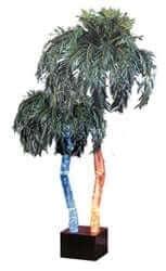 AP 7D AquaPalm Palm tree