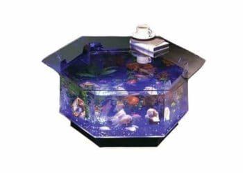 O 100 Aquarium Coffee Table