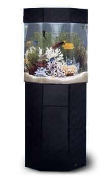 P 5 Pentaview Pentagon AquaCustom Aquarium