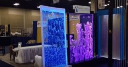 Amazing Bubble Walls You Have To See This