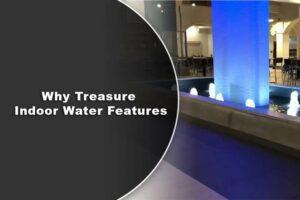 Why Treasure Indoor Water Features